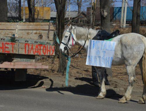 В день начала Всероссийской стачки дальнобойщиков в Биробиджане остановилось несколько большегрузных автомобилей