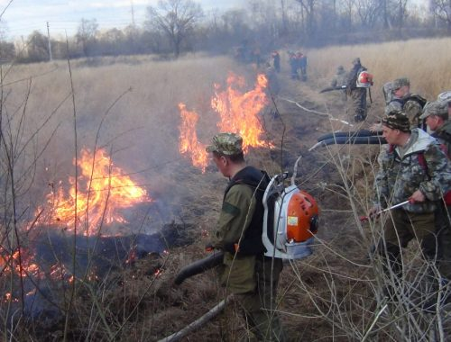 Пожарные ВВО переведены в режим повышенной готовности из-за ухудшения пожарной обстановки