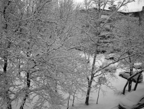 Последний отголосок ушедшей зимы: Биробиджан засыпало снегом