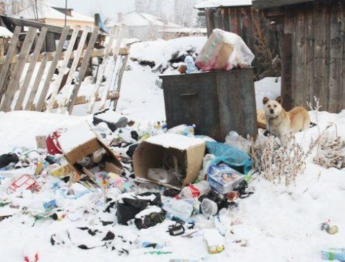 Помойку в Николаевке уберут по решению суда