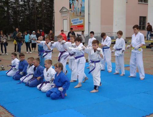 Первомайский фестиваль спортивных единоборств прошел в Биробиджане