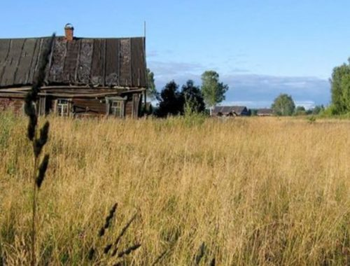 В Октябрьском районе арендатор ответит за неиспользованные земли