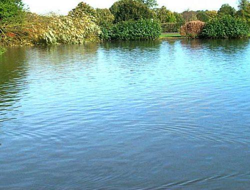 Девятилетний мальчик утонул во время рыбалки в ЕАО