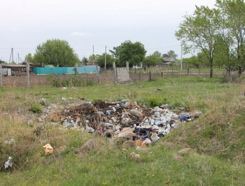 Активисты продолжают борьбу с мусором