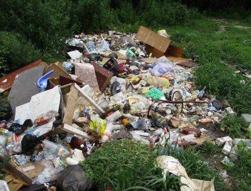 Проект ОНФ «Генеральная уборка» в Биробиджане не работает