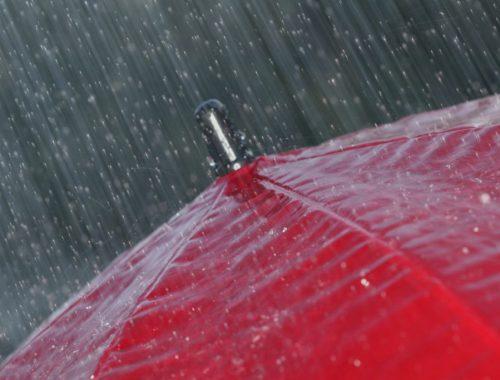 Завтра, 22 августа, на территории области ожидаются сильные дожди