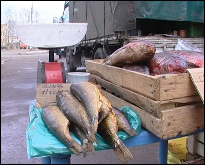 Рейды в местах несанкционированной торговли выявили нарушение ветеринарного законодательства
