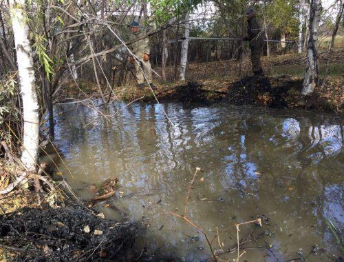 Костные останки, обнаруженные близ села Соцгородок, принадлежат трехлетней пропавшей девочке
