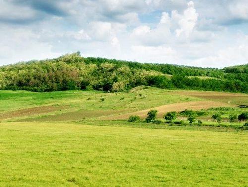 Дальневосточный гектар может превратиться в десять