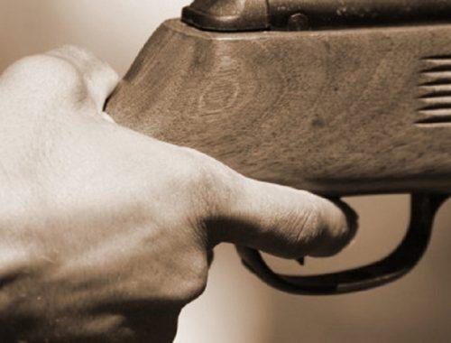 Стрельбой из оружия закончились разборки двух предпринимателей в с. Дежнёво ЕАО