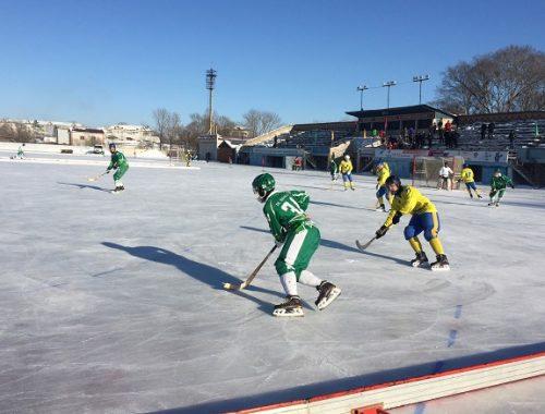 Кубок губернатора по хоккею с мячом завоевала биробиджанская «Надежда»