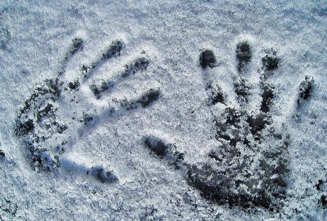 Полицейские попытались остановить снежками угонщика иномарки