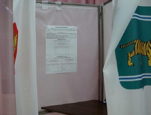В законы о выборах в ЕАО внесены изменения
