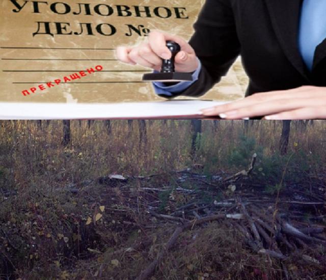 Получателю «дальневосточного гектара» удалось избежать уголовной ответственности
