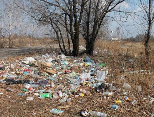 «Добро пожаловать»: мусорные свалки встречают приезжающих в Биробиджан