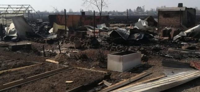 По факту пожара в п. Птичник организовано проведение прокурорской проверки
