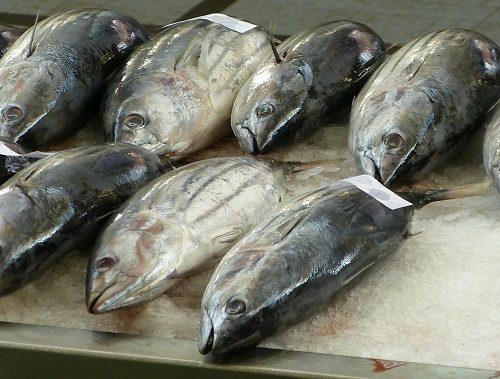 На Дальнем востоке могут взлететь цены на рыбу