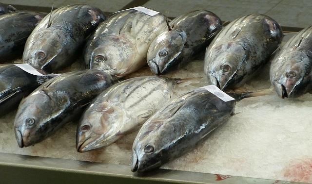 Рыбу и морепродукты проверили на качество в ЕАО