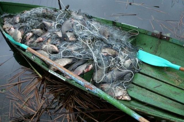Рыбалка обернулась уголовным делом