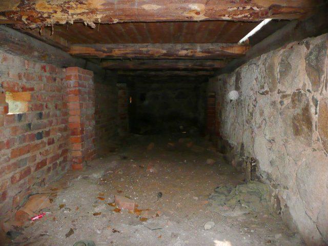 Биробиджанец пытался спрятать в подвале тело сожительницы