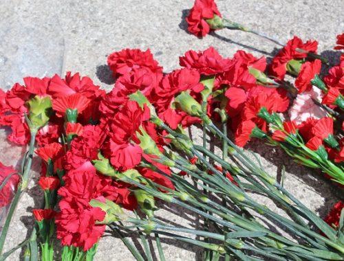 Мемориал медсестрам, погибшим в Сирии, откроют в Биробиджане