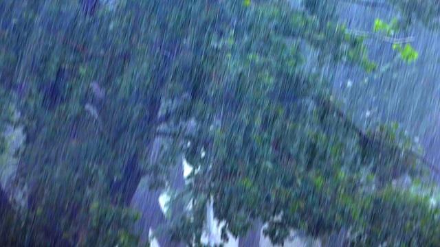Сегодня ночью ожидается сильный дождь