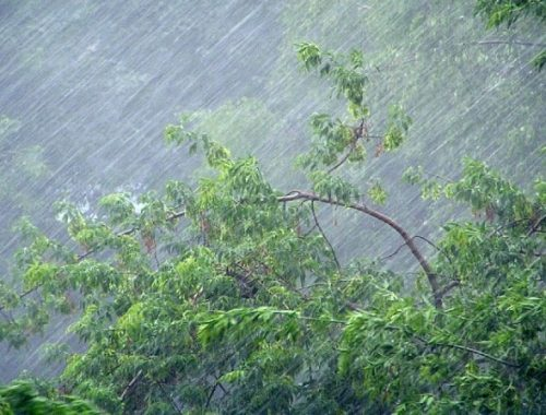 На территории области возможны ЧС из-за сильного дождя
