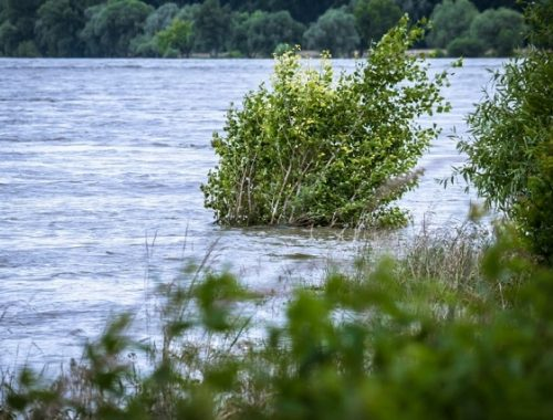 Итоги прохождения паводка обсудили в ЕАО