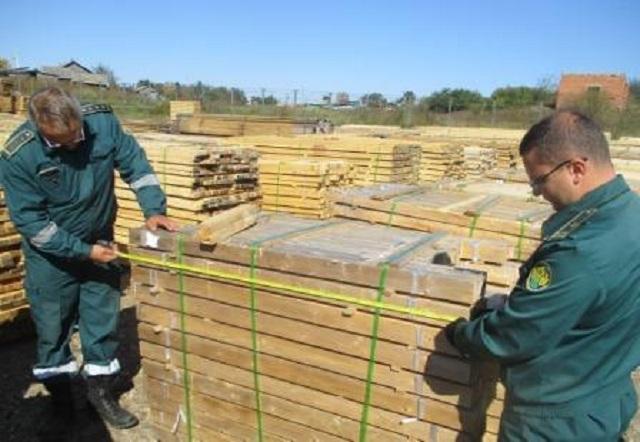 Почти три вагона древесины пытались незаконно вывести в Китай