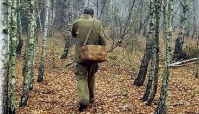 Заблудившийся в лесу сборщик орехов самостоятельно добрался до дома