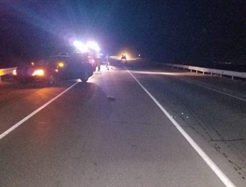 Два человека погибли на дорогах ЕАО за минувшие выходные