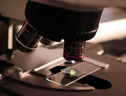 Еврейская автономия вновь отметилась низким уровнем научно-технологического развития