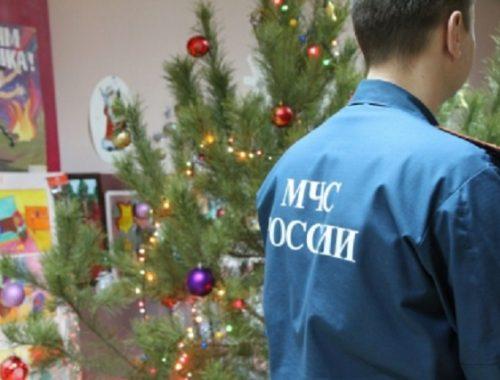 Как правильно выбрать новогоднюю ель: рекомендации спасателей ЕАО