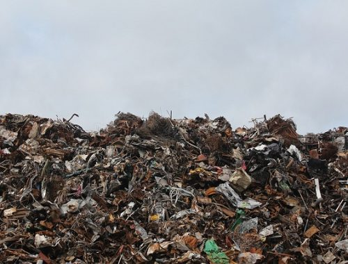 В Госдуме предложили cтроить дороги из мусора