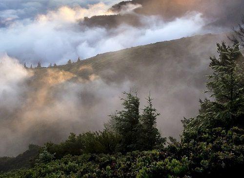 Дым окутал Биробиджан: специалисты следят за качеством воздуха