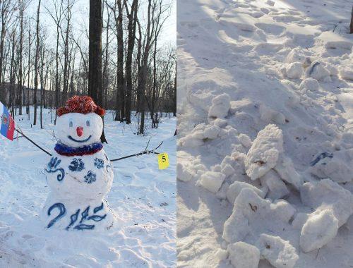 Вандалы не пощадили снеговиков в городском парке культуры и отдыха в Биробиджане