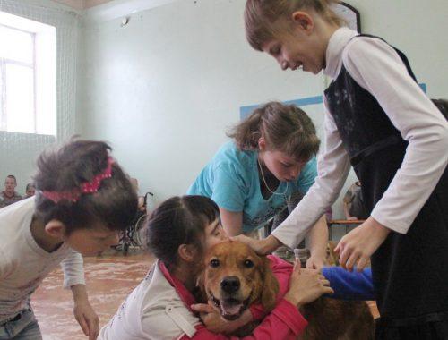 Владельцы собак показали своих питомцев воспитанникам Валдгеймского детского дома
