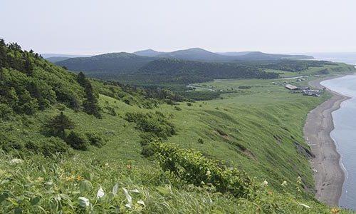 Заповедные земли под видом дальневосточных гектаров раздают в Сахалинской области