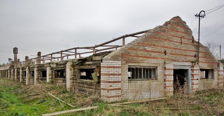 Ухудшение ситуации в сельском хозяйстве ЕАО отмечает официальная статистика по итогам прошлого года