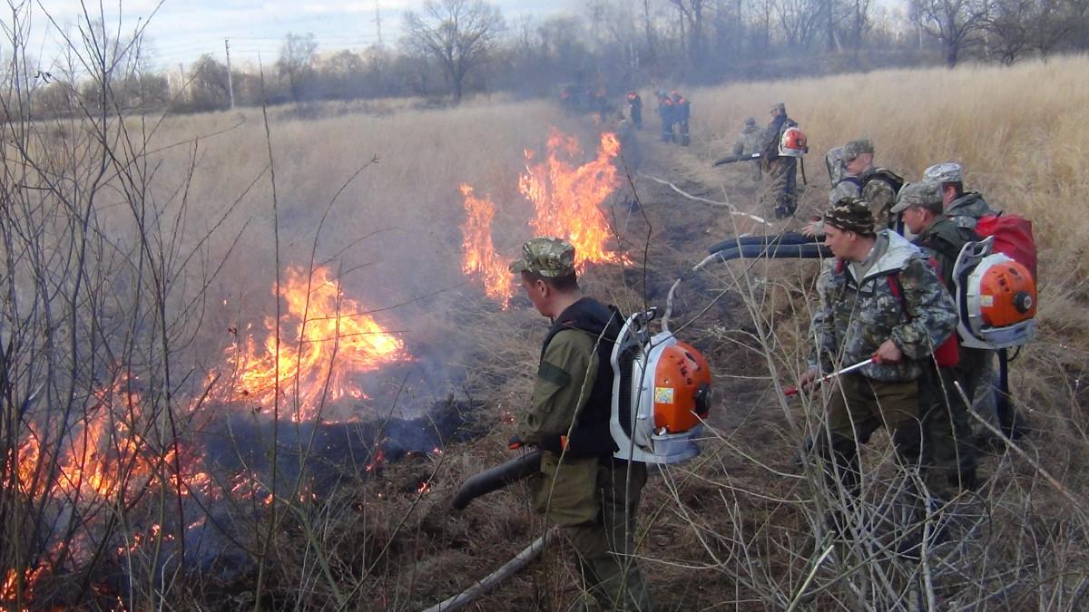 Лесные пожары в ЕАО возникают рядом с населенными пунктами