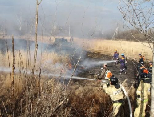 Огнеборцы ЕАО потушили сорок ландшафтных пожаров за выходные