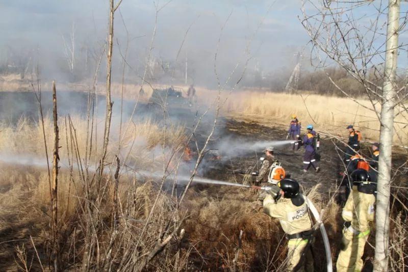 Средства на тушение лесных пожаров нужно увеличить минимум в два раза – замначальника управления лесами