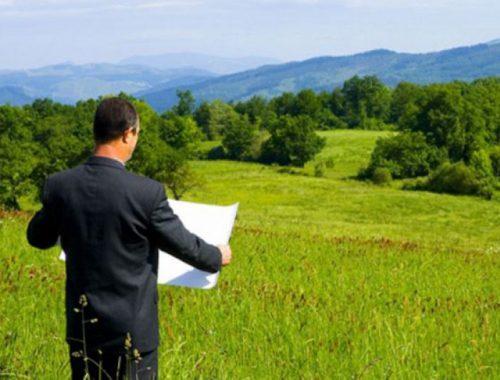 Областные депутаты могут ограничить раздачу «дальневосточных гектаров» в границах населенных пунктов