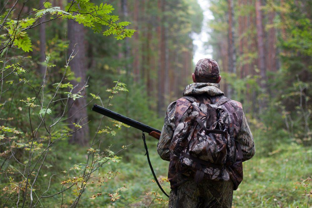 «Дальневосточный гектар» под охотугодья будут выделять при условии строительства инфраструктуры