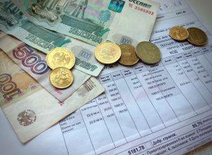Депутатов отправят собирать долги за ЖКХ в ЕАО