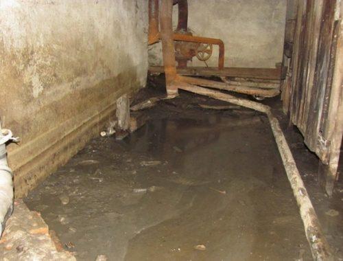 Канализационные стоки в подвалах домов по улице Юбилейной ликвидируют только осенью