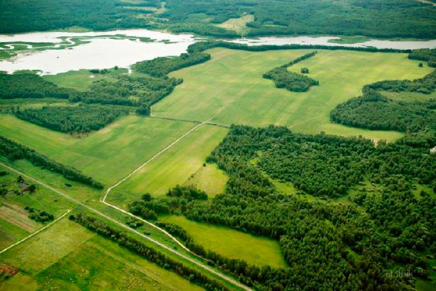 В Хабаровском крае появится поселок из «дальневосточных гектаров»