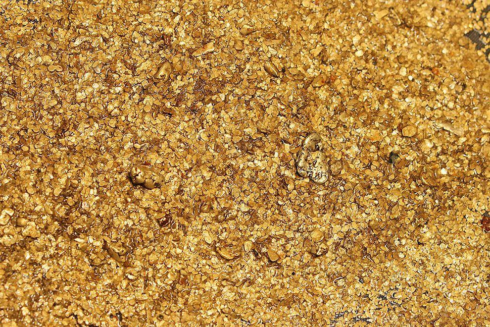 Более 6 килограмм золота, незаконно добытого на территории ЕАО, будет обращено в доход государства