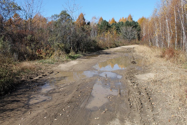 Активисты ОНФ в ЕАО помогают дачникам добиться ремонта дороги