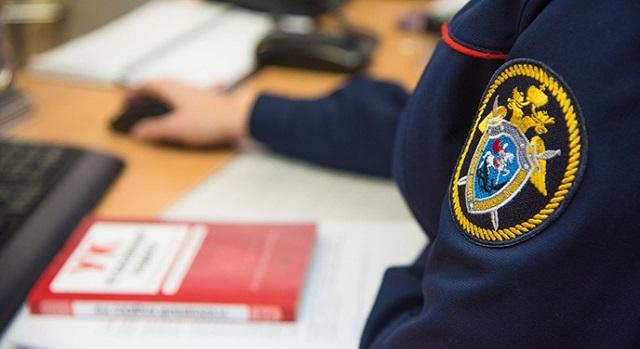 По факту исчезновения двух девочек из Смидовичского района ЕАО возбуждено уголовное дело